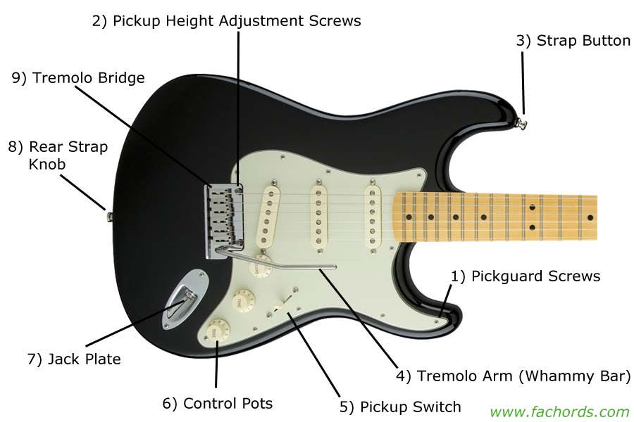 guitar parts names know the parts of electric guitar. Black Bedroom Furniture Sets. Home Design Ideas