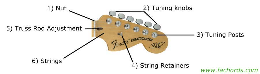 Prime Guitar Parts Names Know The Parts Of Electric Guitar Wiring Digital Resources Timewpwclawcorpcom