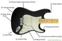 Guitar Parts Names | Know The Parts Of  Electric Guitar article icon