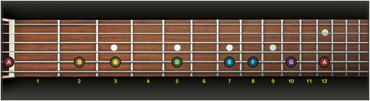 guitar fretboard notes exercise