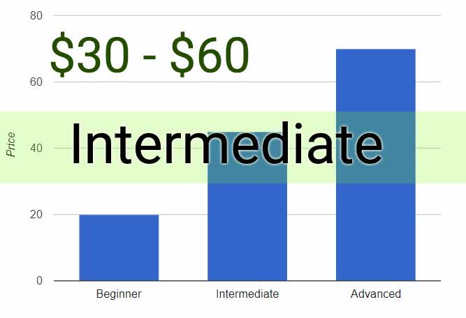 intermediate guitar lessons price